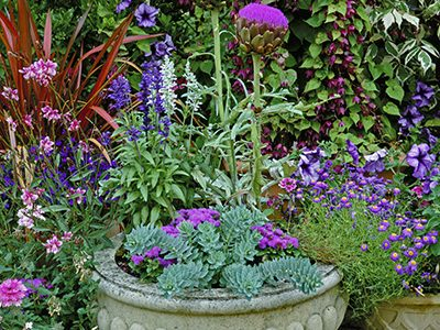 container gardening Archives - Stockslagers Greenhouse