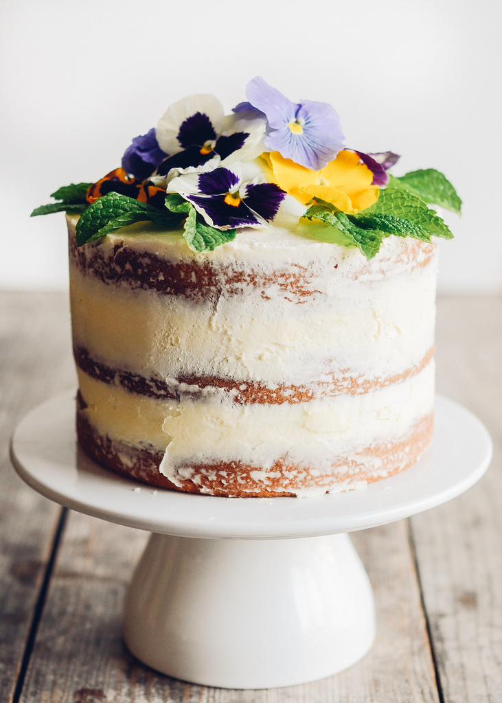 The 5 Coolest Edible Pansy Ideas From Around The Web Stockslagers