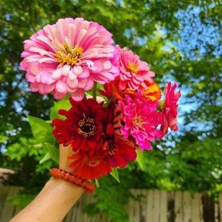 best flowers to grow in ohio